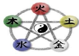 Curso Medicina Tradicional China