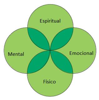 holismo, holistica, enfoque holistico